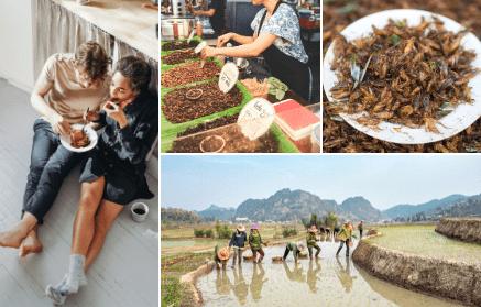 Hmyz a chrobáky - všetko dôležité predtým, než ochutnáte cvrčka