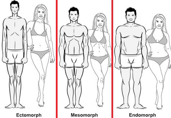 A genetika hatása az izomfejlődésre és fogyásra