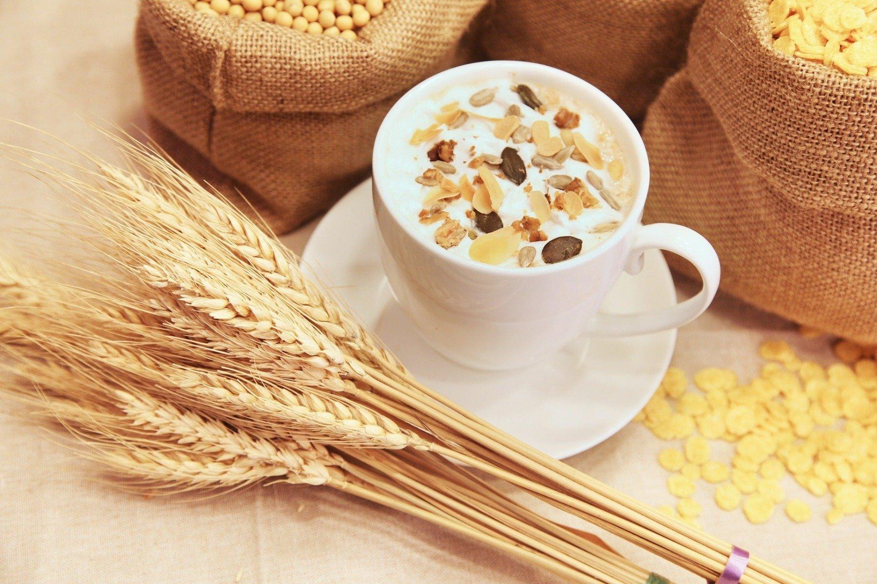 Gluten-free flours - oat flour