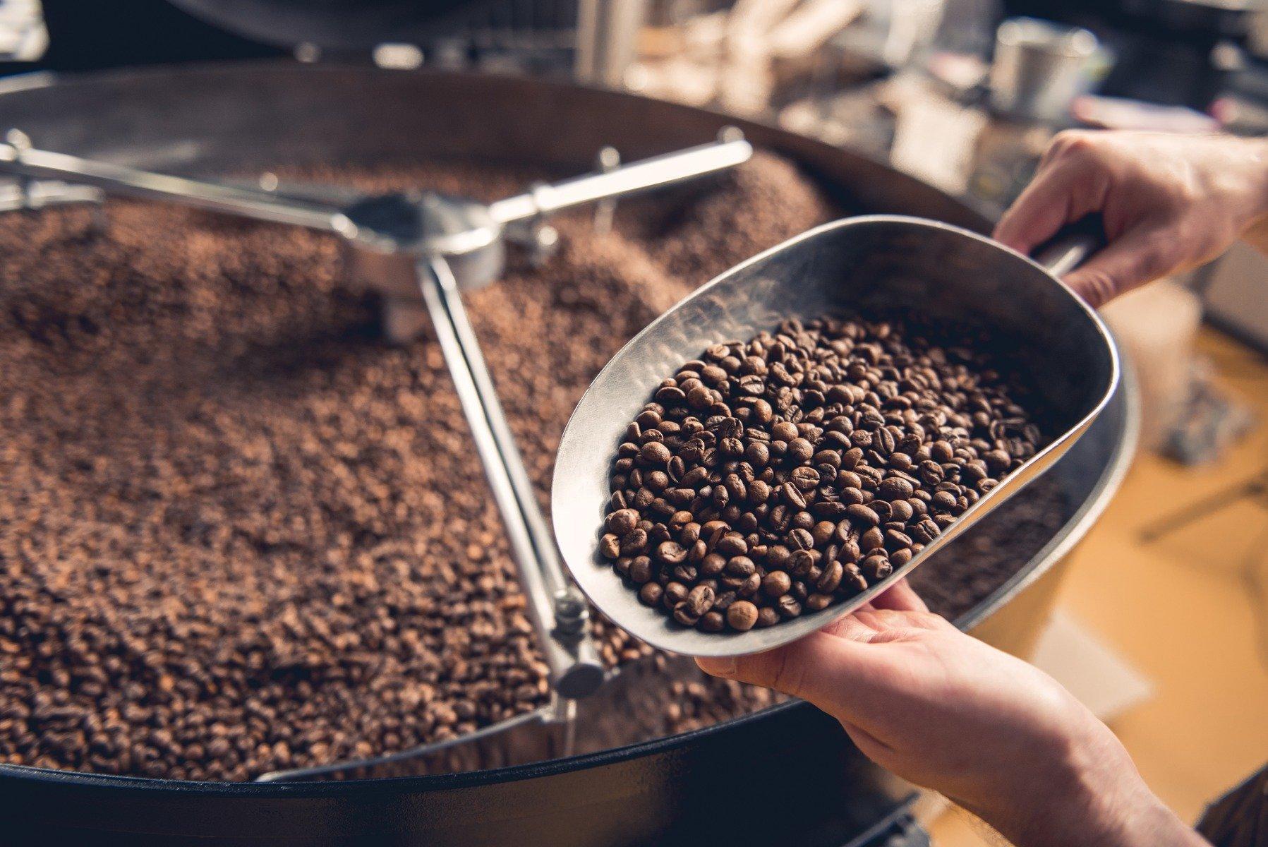 Pierdere de grăsime cafeină ncbi, Fat Out! Thermo Burn 1+2 GRATIS