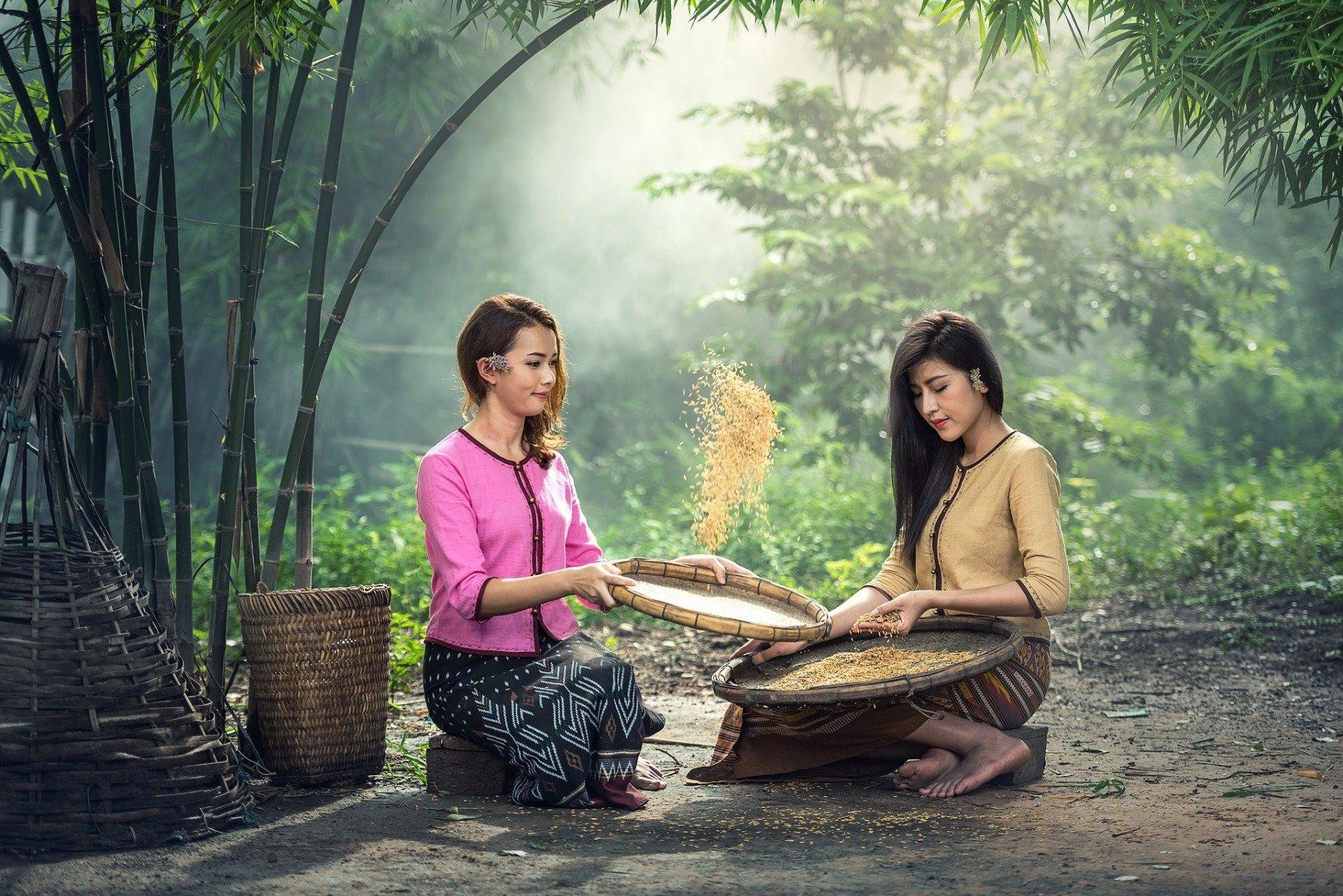 Gluten-free flours - rice flour