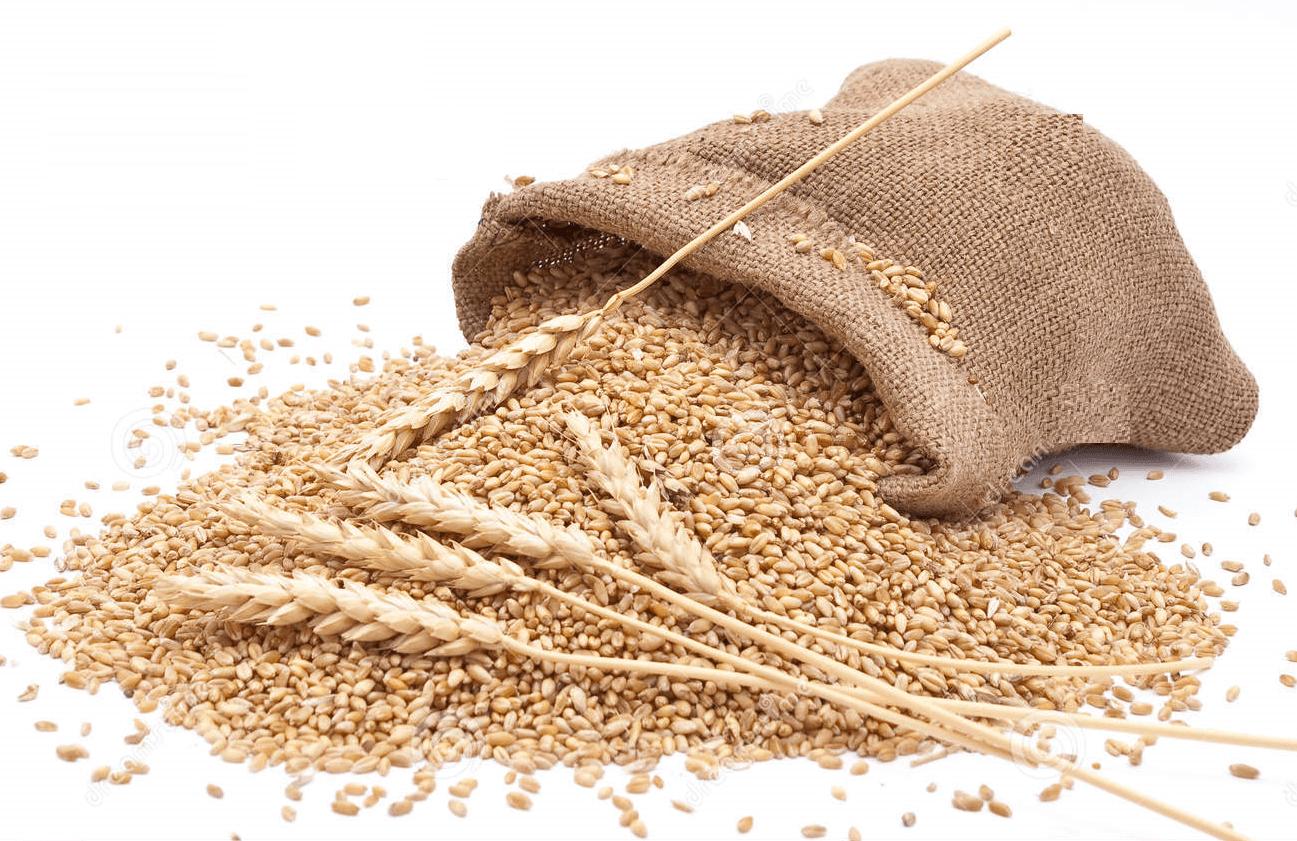 Maltodextrină din grâu